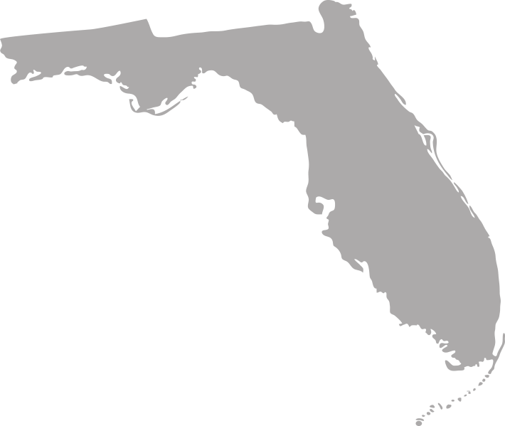 Florida with map markers on it